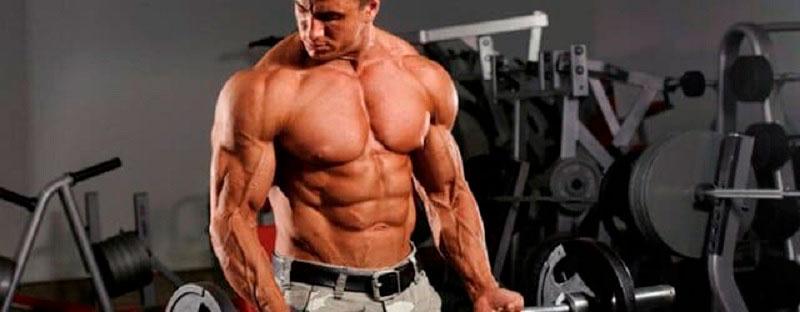 Программа для набора мышечной массы для мужчин: основные критерии