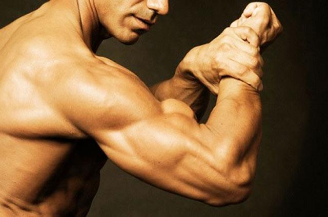 Упражнения на трицепс: лучшие программы для укрепления