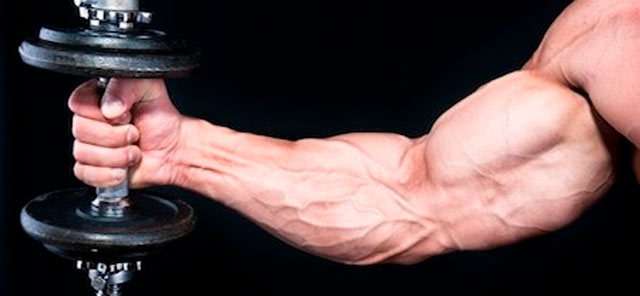 Результативные упражнения на бицепс