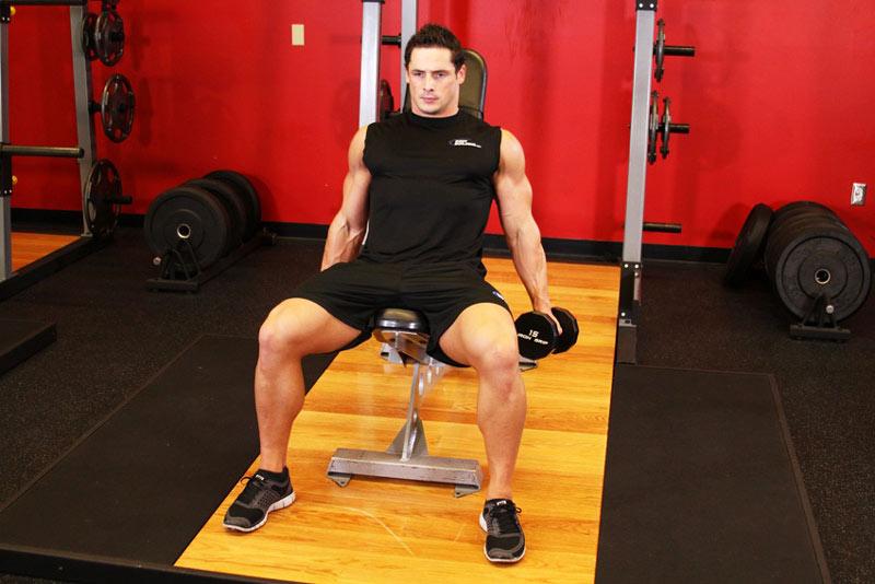 Тренинг из базовых упражнений