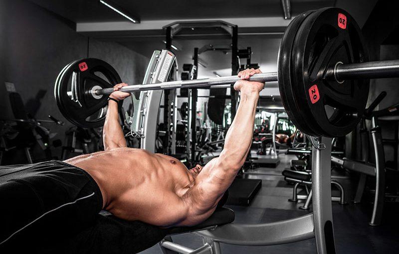 Жим лёжа – какие мышцы работают? Техника выполнения жима лёжа